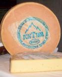 Fontina D.O.P. 7,9-8,0 kg - Caseificio Artigiano Variney - Elisei Duclos